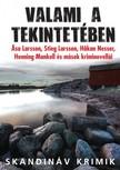 Holmberg (szerk) John-Henri - Valami a tekintetében - Svéd kriminovellák  [eKönyv: epub,  mobi]