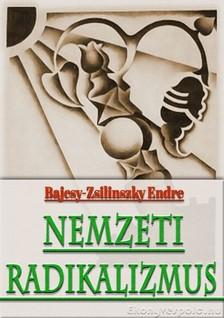Bajcsy-Zsilinszky Endre - Nemzeti radikalizmus [eKönyv: epub, mobi]