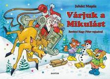 Juhász Magda - Várjuk a Mikulást - leporelló