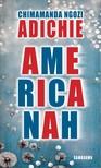Chimamanda Ngozi Adichie - Americanah [eK�nyv: epub,  mobi]