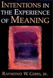 GIBBS, RAYMOND W, - Intentions in the Experience of Meaning [antikvár]