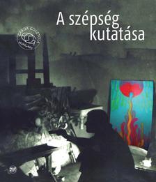 Gosztola G�bor - A sz�ps�g kutat�sa