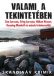 John-Henri Holmberg (szerkesztő) - Valami a tekintetében - Svéd kriminovellák