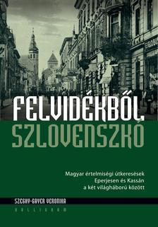 Szeghy-Gayer Veronika - Felvidékből Szlovenszkó - Magyar értelmiségi útkeresések Eperjesen és Kassán a két világháború között