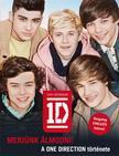 One Direction - Merj�nk �lmodni! - A One Direction t�rt�nete - KEM�NY BOR�T�S